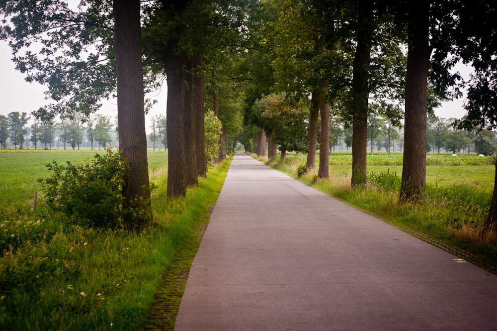 Dutch Country Road